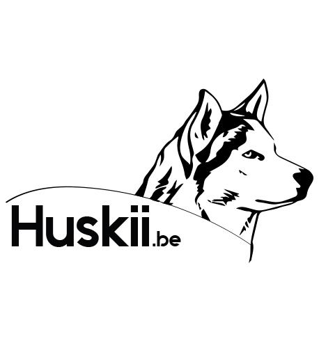 huskii-logo-homepage